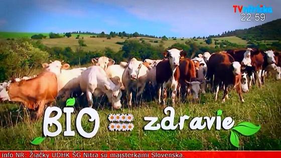 TV_Nitricka1