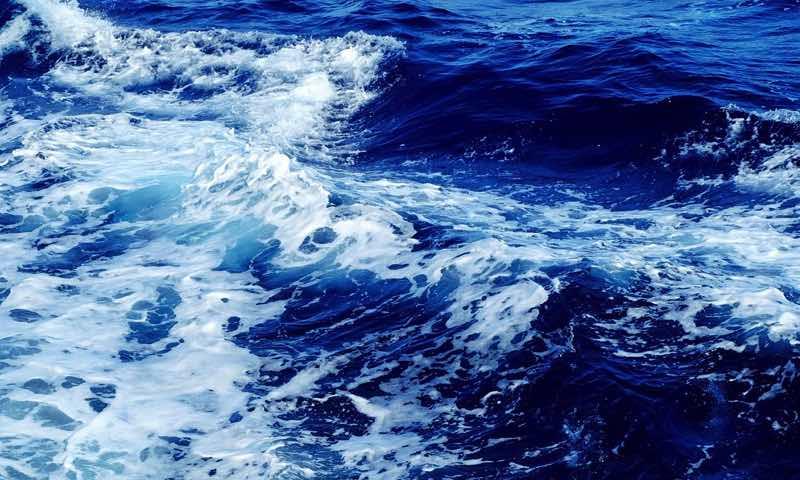 Viasat Nature uvedie dokumentárny seriál Veľká koralová bariéra